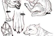 canine drawing tutorials