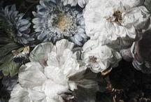 Dark blooms inspiration winter 2015-16