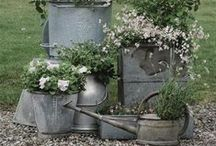 Container Gardening / by Jennifer Baker