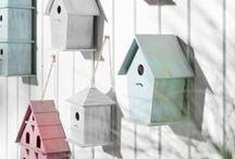 For The Birds / by Jennifer Baker