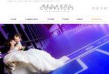 Art et Culture - Sites Internet / Sites Web crées par Cognix Systems, SSII située à Rennes et Brest, pour des organismes culturels