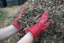 Soils & Composting / by Jennifer Baker