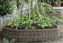 Garden Structures / by Jennifer Baker
