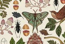 Prints, Patterns, & Design