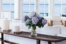 Coastal Style Decor / by Nan B.