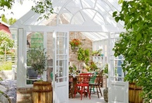 I just LOVE greenhouses / by Helle Collin