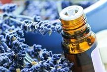 Essential Oils + Herbs / by Anti-aging Fusion
