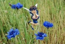 Flower Fairies / I collect flower fairie figurines and then take picture of them by their flowers. The figurines are based on the paintings by Cicely Mary Barker / by Sarah Rigby Webb