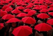 rosso colore