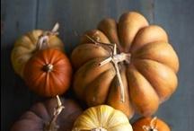 Fall / by Rachelle Branca