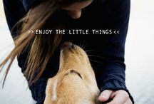 All Things Lovely / by • k y l z •