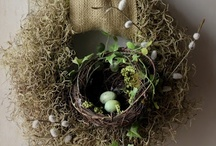 SPRING / All ideas, home decor, crafts, diy's, project for Spring