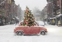 Joyeux Noel / 'tis the season / by Schuyler Blyth