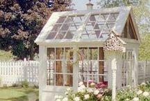 Greenhouses, Glasshouses & Polytunnels (mostly recycled) / Gardening with Polytunnels and Greenhouses / by Greenside Up