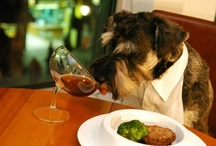 Puppies Love Wine Too / Here at Pinot, we like dogs a lot (Like...a lot, a lot!).