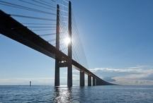 LIVING BRIDGES PLANET