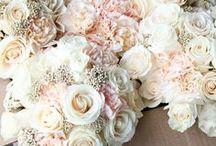 Wedding & The Future / by Emily Mangano