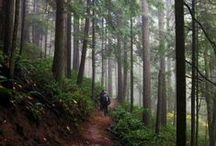 Oregon Living / by ireland
