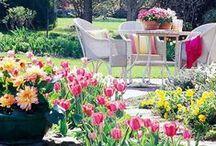 Garden Inspiration / Some Amazing Inspirational Garden Ideas..