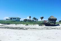 USA / road trip en Floride / mars 17 / welcome to my photo album