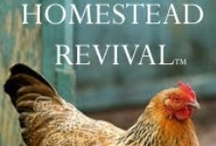 Homesteading / by Stephanie Mullani