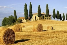 Tuscany / The 