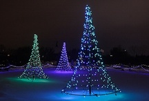 WPS Garden of Lights / by Green Bay Botanical Garden