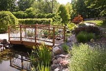 Children's Garden / by Green Bay Botanical Garden
