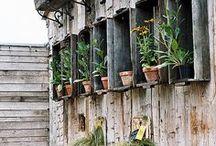 Garden sweet garden!