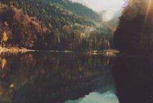 ● NATURE ●