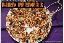 Birds: Feeding, Watching, and Crafts / A collection of ideas to use with preschool and young children to feed, attract,observe, and learn about birds.