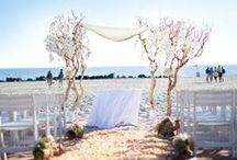 Wedding Arches and Canopies