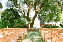 Wedding Ceremony / Ideas and inspiration for the ceremony / by Michelle Eleanor