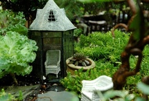fairy garden / by Diane Sanchez
