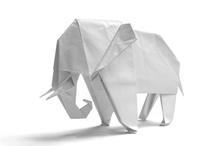 Origami / by Derrin Edwards