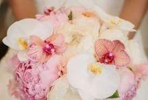 wedding ideas and stuff / by Karen VanDaff