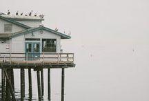 SEAWASHED shack