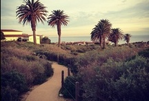 .:from our friends:. / Share your Terranea pins with us! / by Terranea Resort