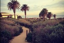 Terranea Resort Guests / Share your Terranea pins with us! / by Terranea Resort