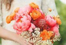 Wedding Bouquets/Flowers / by kalanicut