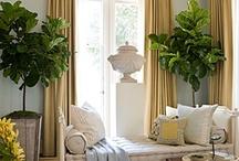 Indoor Gardens and Plants