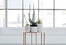 furniture & products / by Xanele Puren