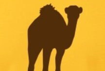 Camel Inspirations / The lil one loves Camels and I am in the quest for camel/desert inspirations