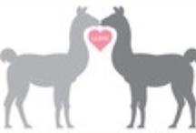 Llamas get their OWN board ♥ / by Erika Huggins