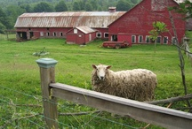 Barns, Farms & Country Living