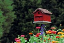Birdhouses & Bird Feeders