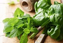 Herbology / The many uses of herbs in culinary and medicinal