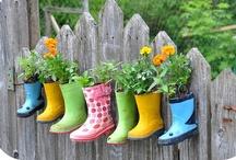 Garden Idea's! / by Chaera Brady