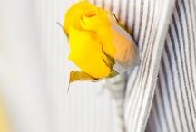 Yellow & Gray Wedding / by Bellus Designs