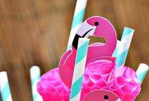 PARTY THEME - Flamingo Fantastic